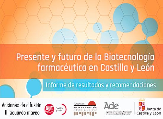 Análisis , evolución e implicaciones para el empleo en Castilla y León