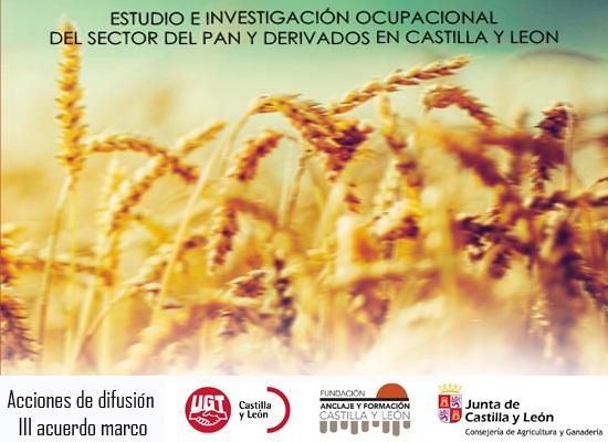 Estudio en Investigación ocupacional del sctor del pan y derivados en Castilla y León