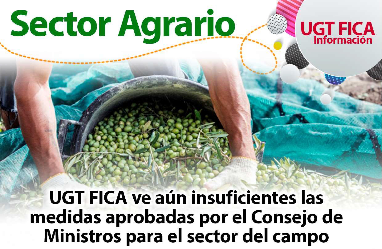 UGTFICA ve insuficientes las medidas sector campo aprobadas el 7 De Abril del 2020